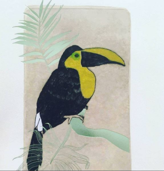 jeanne-picq-gravure-taille-douce-toucan-choco